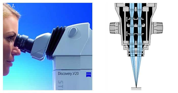 SteREO Discovery.V8 Discovery.V12 и Discovery.V20